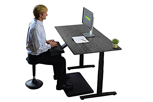 Rise UP Dual Motor Electric Standing Desk 60x30 Black Bamboo Desktop Premium Ergonomic Adjustable Height sit Stand up Home Office Computer Desk Table Motorized Powered Modern Furniture Small Standup