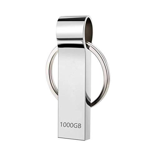 Dorypal Chiavetta USB 1TB USB 3.0 High Speed Mini USB Pen Drive Memoria USB Pendrive 1000GB Portatile Penna USB con Portachiavi Metallo Pen Drive per PC, Laptop, Archiviazione Dati Esterna (1000gb)