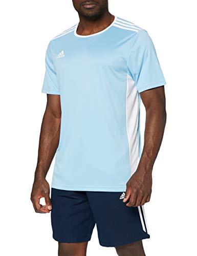 adidas Entrada 18 JSY T-Shirt, Hombre, Clear Blue/White, M