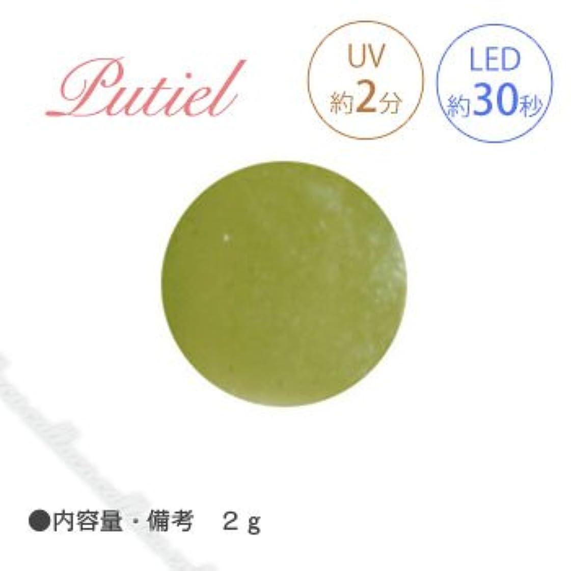 効果滴下具体的にPutiel プティール カラージェル 506 リーフ 2g
