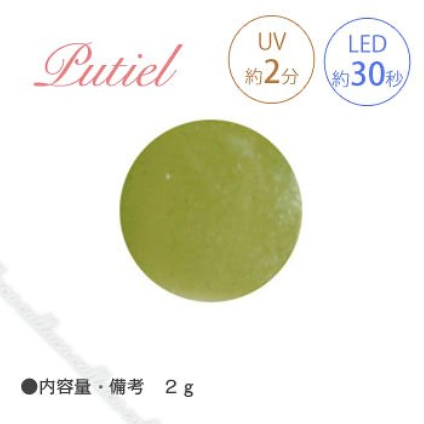 デコレーション行列肉屋Putiel プティール カラージェル 506 リーフ 2g