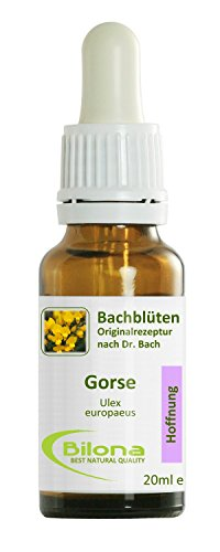 Joy Bachblüten, Essenz Nr. 13: Gorse; 20ml Stockbottle