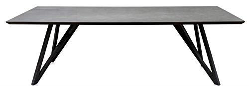 Casa Padrino Esstisch mit mineralbeschichteter Tischplatte Esszimmermöbel, Grösse:250 x 100 cm