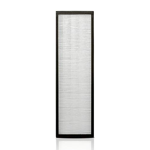 Alen T500 Air Purifier Replacement Filter - HEPA Silver Carbon for Mold, Bacteria & Light Odors - TF60-Silver-Carbon (1-Pack)