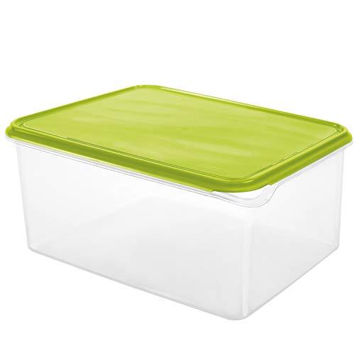 Rotho Rondo Serbatoio di stoccaggio 8l con coperchio, Plastica PP senza BPA, Verde/Bianco, 8l 31.5 x 24.0 x 14.5 cm