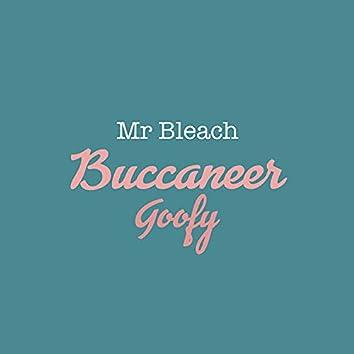 Mr bleach