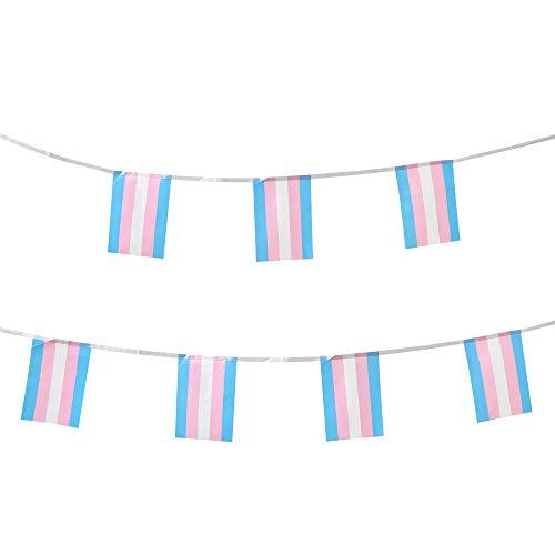100 Foot of Transgender Pride Flags