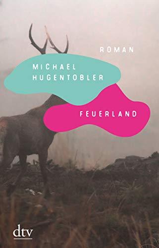 Buchseite und Rezensionen zu 'Feuerland: Roman' von Michael Hugentobler