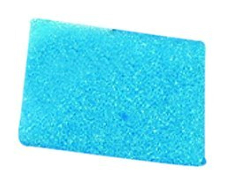 Kartell 230264-0001 Blue Tissue Embedding Sponge for Tissue Embedding Cassettes, 1.2' Length x 1' Width (Case of 500) [並行輸入品]