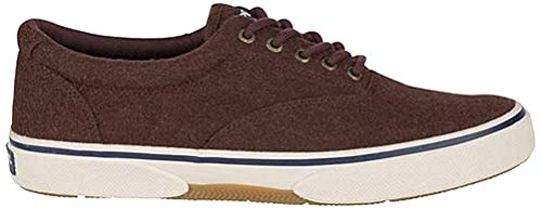 Sperry Men's, Halyard Sneaker Brown Wool 10.5 M