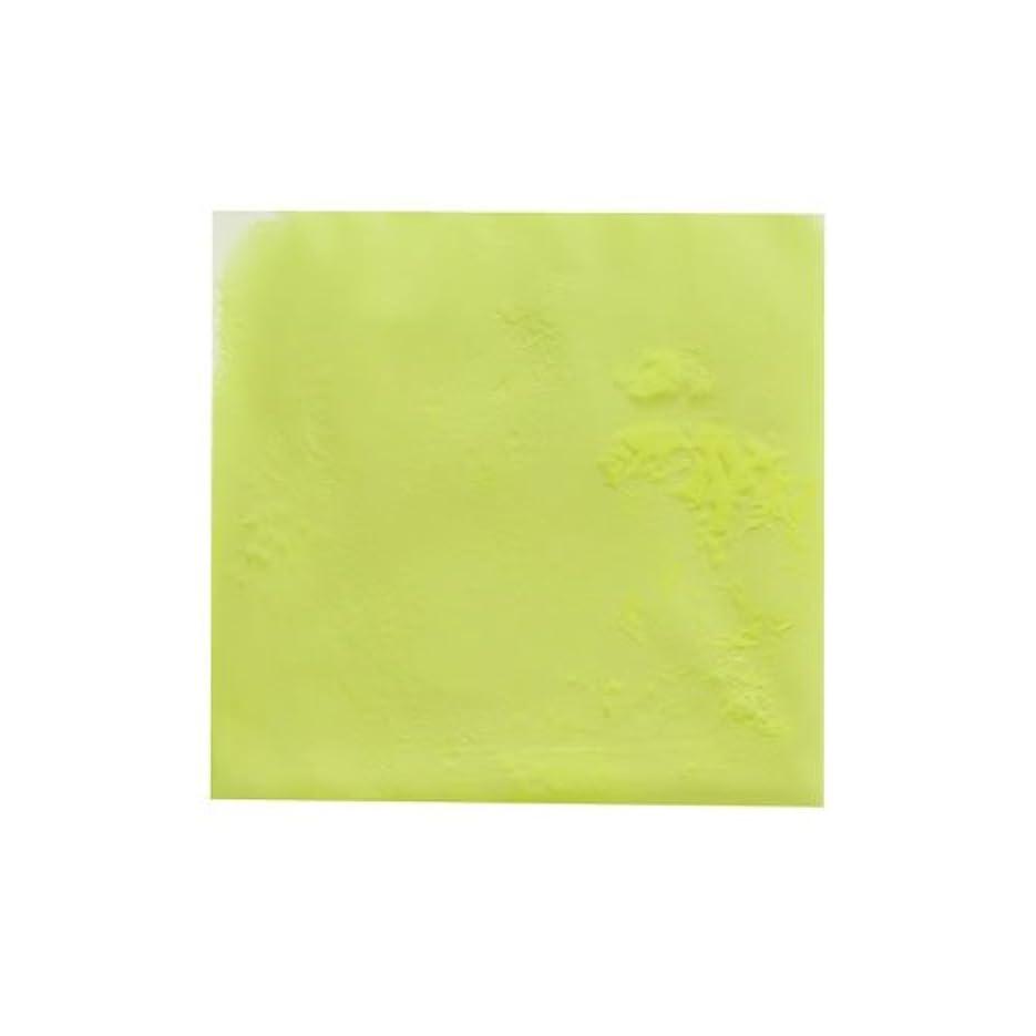エコーオーナー番号ピカエース ネイル用パウダー ピカエース 夜光顔料 蓄光性 #105 レモン 3g アート材