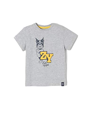 Zippy Zwembroek voor jongens