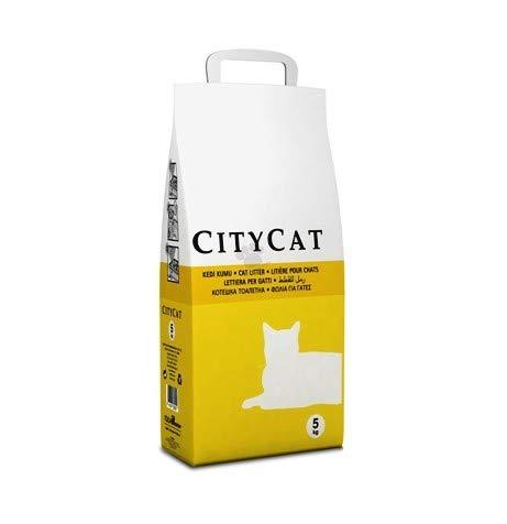 TOLSA City Cat 5KG SEPIOLITA