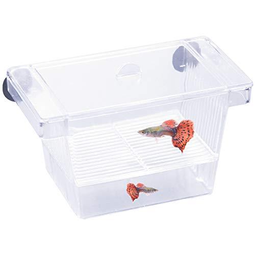 Aufzuchtbehälter Ablaichstation Breeding Box Ablaichkasten Zucht Isolation Box für Fische Garnelen, Transparent Brutkasten Zuchttanks Kunststoff Fisch Züchter Box mit 2 Saugnapf für Aquarium