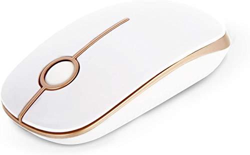 Jelly Comb Kabellose Bluetooth Maus, 2.4G+Bluetooth Maus Schnurlos Wireless Optische Bluetooth Maus für PC/Tablet/Laptop und Windows/Mac/Linux (Bluetooth+2.4G-Weiß und Gold)