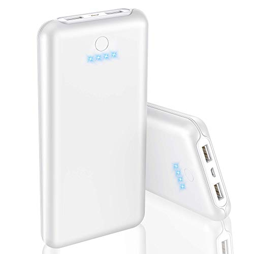 GRDE Batería Externa Power Bank Ultra Capacidad Cargador Portátil Móvil con 2 Salidas USB 5V/2.1A y 4 LED Indicadores, 24000 mAh Powerbank Carga Rápida para iPhone Android Tablet etc