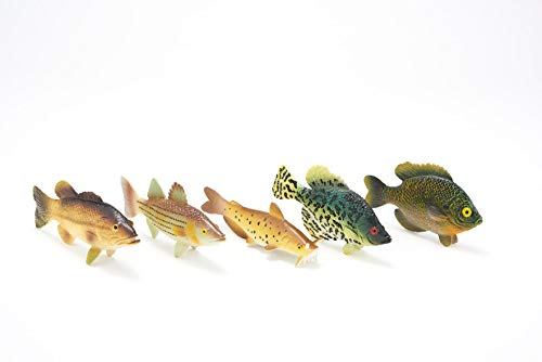 American Angler Collection Toy Fish Set | Toy Bass | Toy Catfish | Fish Figurines | Fish Toys for Kids | Largemouth Bass Catfish Bluegill Crappie Striper | Educational Toy | by Toy Fish Factory