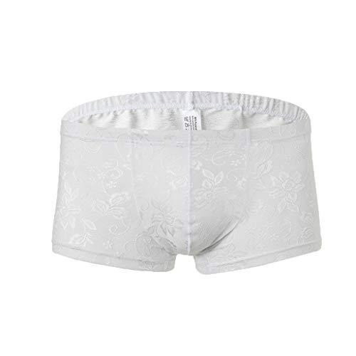 Trisee Herren Unterwäsche Sexy Spitze Boxershorts Hüft Shorts Transparent Lingerie feinem Dessous Atmungsaktiv Panty Stretch Unterhosen hochwertige Briefs Underwear Einfarbig Retroshorts