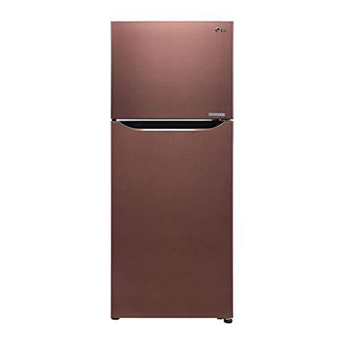 LG 260 L 3 Star with Inverter Double-Door Refrigerator (GL-C292SASX, Amber Steel)