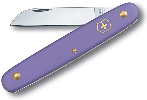 Victorinox Blumenmesser für Schneidearbeiten im Garten (Rostfreie gerade Klinge, Universalmesser, Edelstahl, Nylon Griff) violett B1