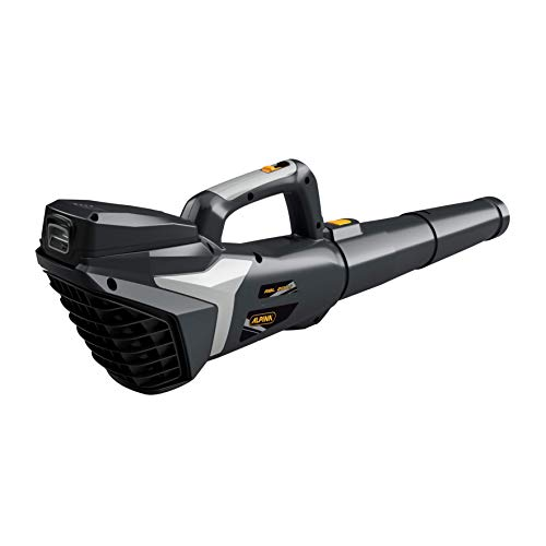 Alpina Soffiatore a Batteria ABL 20 Li Kit, per un Giardino Pulito e in Ordine, Batteria 20V 4 Ah, 280 W,Tubo Rimovibile Ralvaspazio, Batteria e Caricabatteria Inclusi