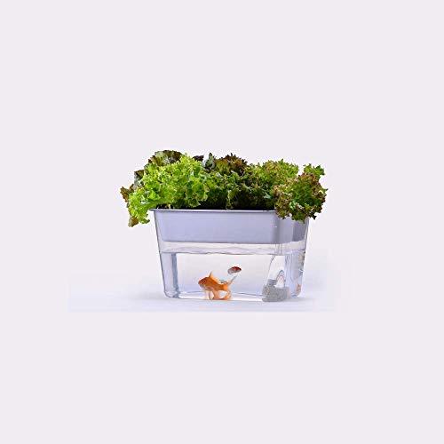 CHEYAL Tanque De Pescados del Jardín del Agua, Sistema De Cultivo Hidropónico. Pecera con Brotes Aquaponic Orgánicos Y Kit De Arranque De Acuario De Hierbas.