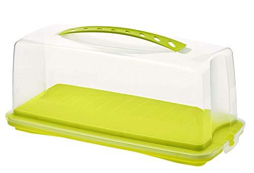 Rotho Fresh Kuchenbehälter mit Haube und Tragegriff, Kunststoff (PP) BPA-frei, grün/transparent, 36,0 x 16,5 x 16,5 cm