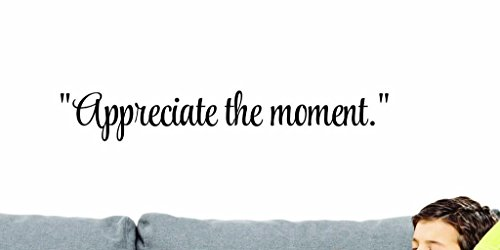 Design with Vinyl US V SOS 783 1 Top Selling Decals Appreciate The Moment. Wall Art Size: 6 Inches X 20 Inches Color: Black, 6  x 20