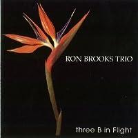 Three B In Flight