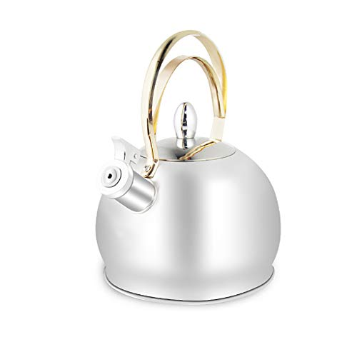 Stainless Steel Whistling Theepot Tea Pot Tea Kettle Grote 3 Liter Hot Water Pot afneembaar deksel beklede handgreep Grote Theepot voor het maken van Fresh Brewed Iced Tea of ​​Coffee