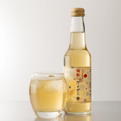梅酢サイダー はちみつ入り 250ml×9本 南高梅 和歌山 ご当地サイダー 国産 お中元 贈答品 お取り寄せ