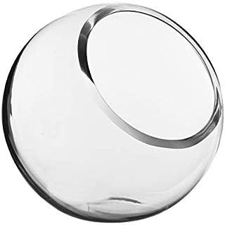 """CYS EXCEL Glass Slant Cut Bubble Bowl, Fish Bowl & Plant Terrarium, Slant Cut Globe Vase Center Piece, Round Flower Vase, Pack of 1 (8"""" Tall 8"""" Wide)"""
