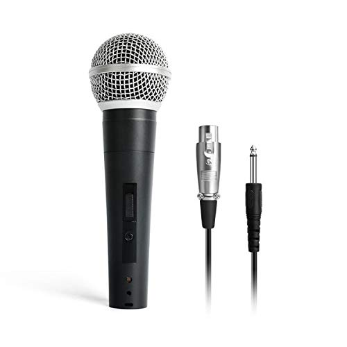 Best karaoke mic