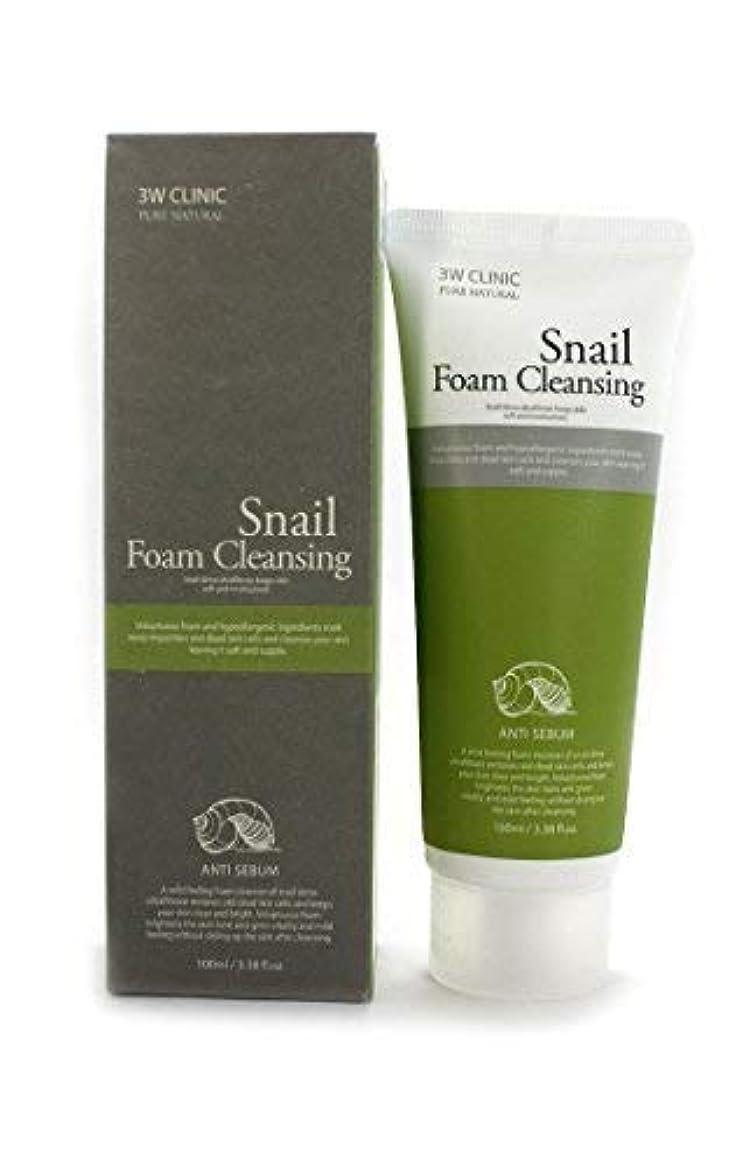 デザート安心させる狐Snail Foam Cleansing クリニック純粋な天然100Ml(3.38Fl。オズ) [並行輸入品]