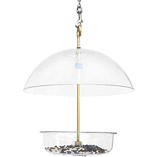 Droll Yankees Seed Saver 031111229929 Platform Cardinal Bird Feeders with Roof Co 10 Inch Clear