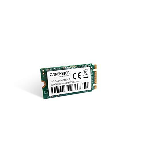TREKSTOR M.2 SSD-Modul 256 GB, interne SSD Festplatte (M.2 2242, SATA, 450 MB/s Lese- und 350 MB/s Schreibgeschwindigkeit)