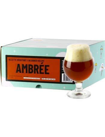 Recette Bière - Brassez Votre bière Maison à partir d'extrait de Malt en Poudre - Recharge Kit de Brassage Débutant - Cadeau (Bière Ambrée)