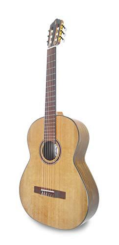 APC Instruments 5C Konzert Gitarre
