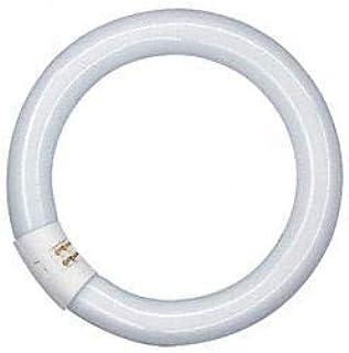 Osram lampe fluorescente fC 2GX13 fluorescentcircular 40 w blanc froid 840
