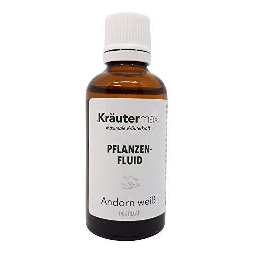 Kräutermax Andorn Kraut Tropfen 1 x 50 ml Paracelsus Signaturenlehre