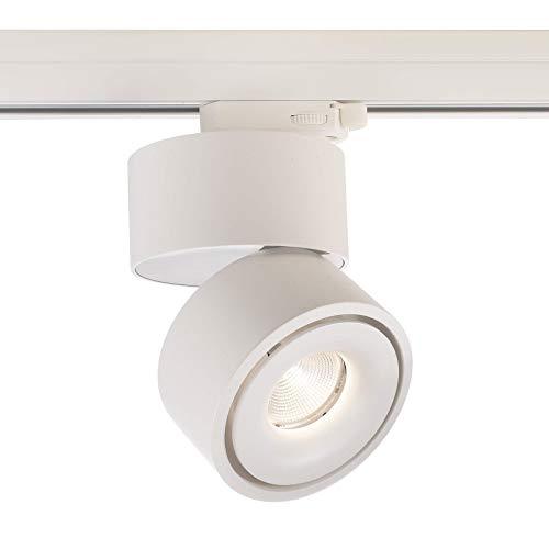 Foco LED Track Spot 3000 K Riel trifásico 16 W Luz Vitrina tienda ra90 230 V