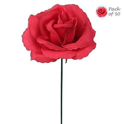 Larksilk Carnations
