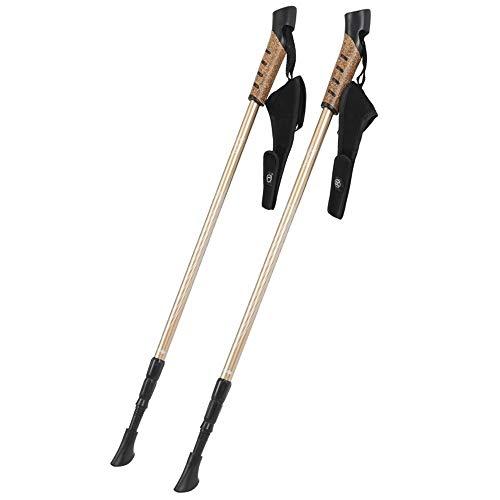 HYQWUB Bâtonnet de Marche Bâton de Marche en Aluminium Bâton de Marche Bâton de Marche Nordique Étape de Marche [2 bâtons]