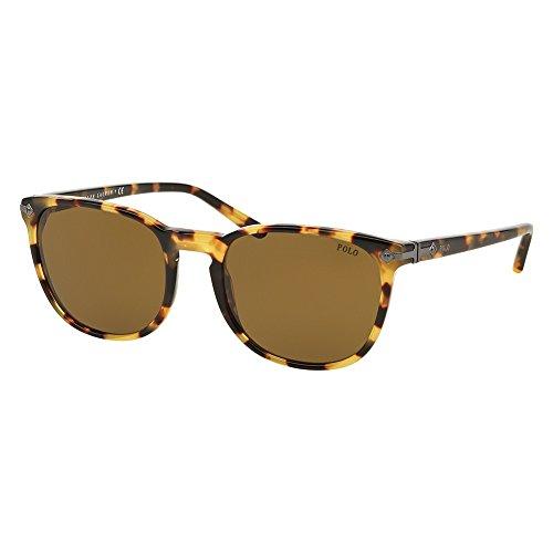 Polo Ralph Lauren heren PH4107 zonnebril, bruin (Havana 500473), één maat (maat fabrikant: 53)