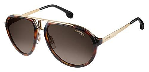 Carrera CA1003/S Pilot Sunglasses, Havana Gold/Brown Gradient, 58 mm