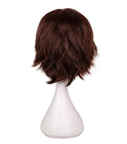 KYT-ma Rouge Blanc Noir Violet Cheveux Courts Cosplay Perruque Homme Party 30 cm Haute température Fibre Perruques de Cheveux synthétiques (Couleur : Dark Brown, Taille : 12inches)