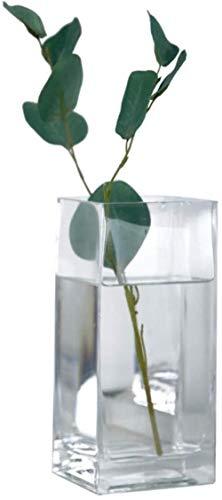 En Transparante vierkante glazen vaas Flowers/Droge Bloem Bloem Arrangeur for thuis/hotel decoratie Ornamenten No Flowers (Color : Medium)