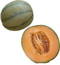 Obst & Gemüse Bio Honigmelone Charentais / Cantaloupe (1 x 1 Stk)