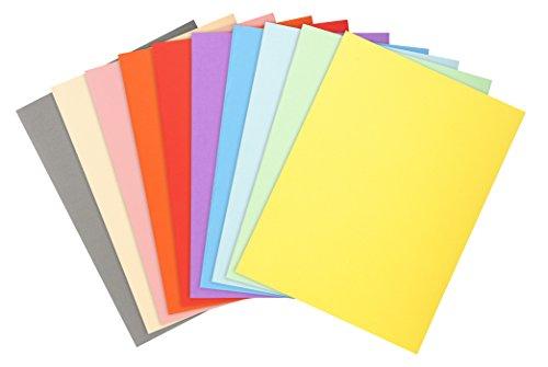 Exacompta 420300e-Lot de 100sous-chemises forever® 180Folio, couleurs assorties
