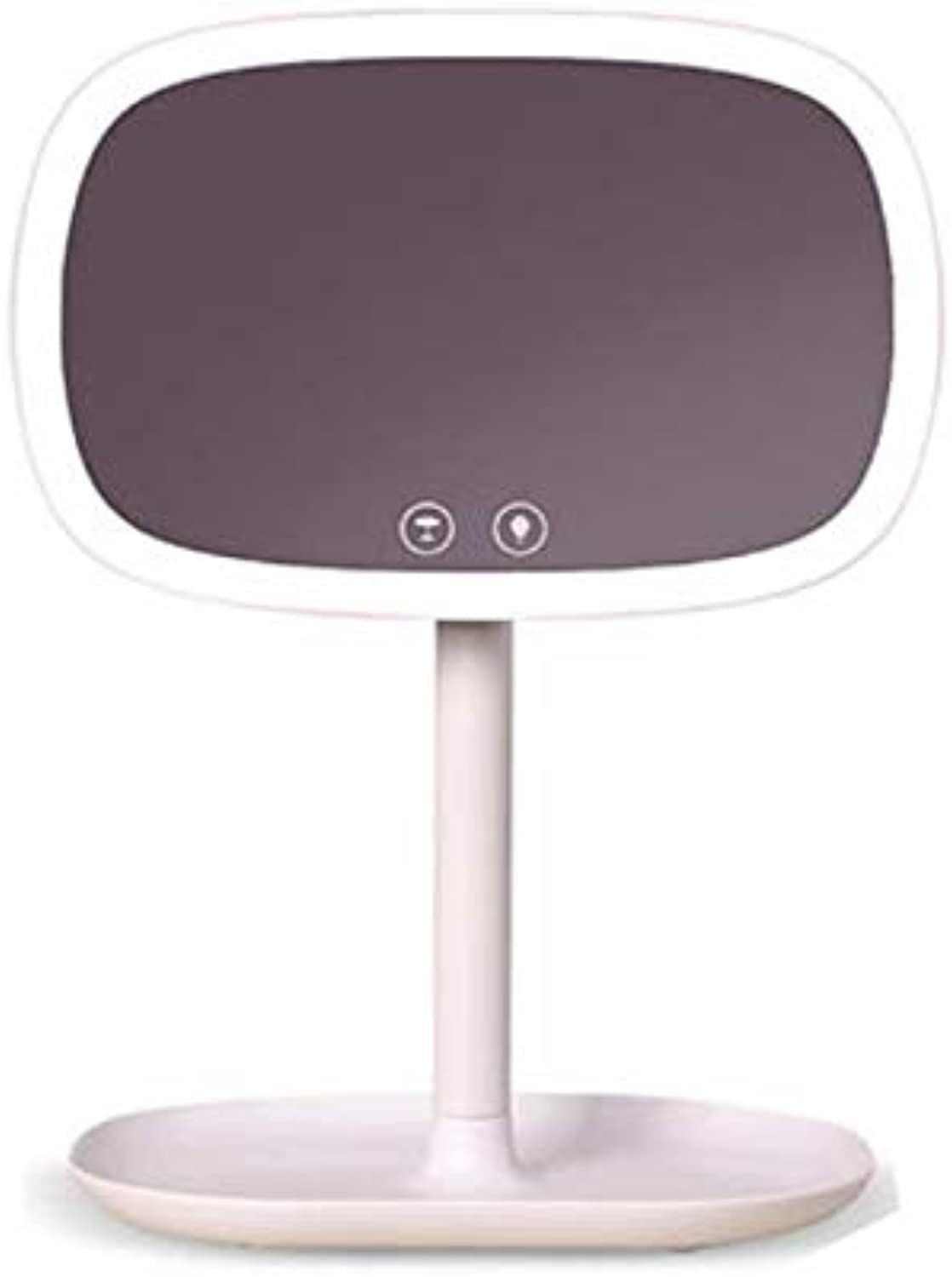 RUOAP Vanity Mirror with Light, LED Desktop Dormitory Household Storage Storage Smart Fill Light HD Portable Dressing Mirror,White,D